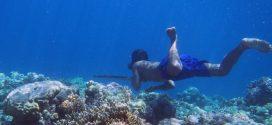 Un plongeur Bajau en train de pêcher - Crédit : Melissa Ilardo
