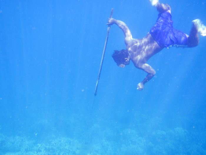 La lance traditionnelle utilisée par les plongeurs Bajau - Crédit : Melissa Ilardo