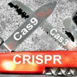 Des chercheurs rapportent la découverte de CRISPR-Cpf1, un nouvel outil basé sur CRISPR, qui permet de modifier l'ADN en dehors d'une cellule dans une boite de pétri ou un tube à essai. On a des implications sur les tests personnalisé du cancer, mais également la compréhension plus fine du fonctionnement de CRISPR.