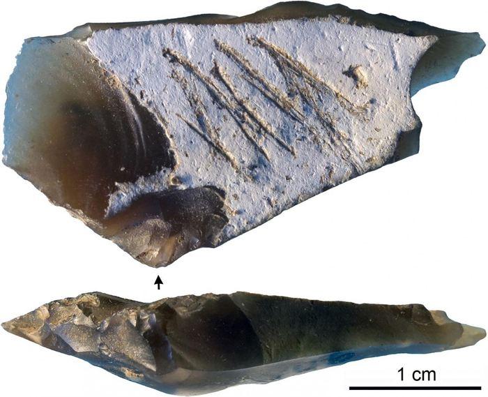 Le morceau de Silex gravée provenant de la grotte Kiik-Koba - Crédit : Majkic et al (2018)