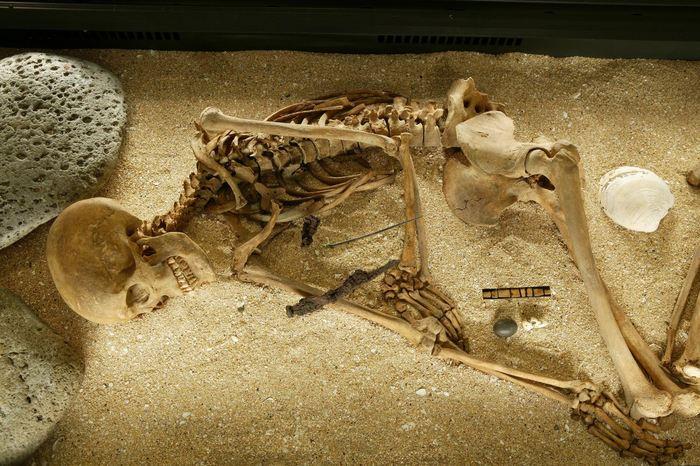 Les restes squelettiques d'une ancienne Islandaise pré-chrétienne (1000 avant C.E.) - Crédit : Ivar Brynjolfsson / The National Museum of Iceland