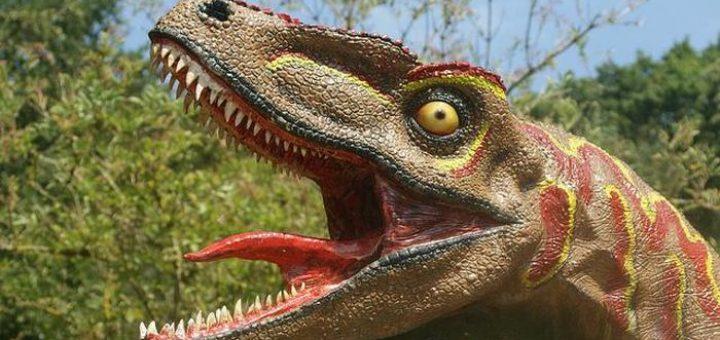C'est une image erronée de la reconstruction des dinosaures. Selon une nouvelle recherche, les dinosaures ne pouvaient pas sortir leur langue de cette manière - Spencer Wright