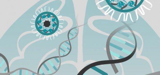 Les chercheurs ont injecté des nanoparticules d'or (en haut à droite) dans le cerveau de souris atteintes du syndrome de l'X fragile pour modifier l'ADN (ciseaux) et éliminer un récepteur de neurotransmetteur ce qui réduit le comportement répétitif typique des troubles du spectre autistique - Crédit : University of Texas Health Science Center at San Antonio
