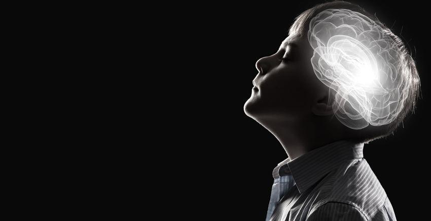 De nombreuses écoles adoptent des interventions sur la mentalité de croissance. Une méthode qui considère que le cerveau est comme un muscle et qu'on peut devenir intelligent si on fait suffisamment d'efforts. Pourtant, une méta-analyse montre que ces affirmations sont infondées dans la plupart des cas.