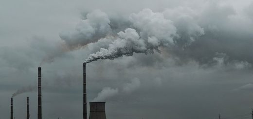 Selon une nouvelle étude menée par l'Université d'East Anglia (UEA), la baisse des émissions de carbone de la Chine devrait se poursuivre si les changements dans la structure industrielle et l'efficacité énergétique du pays se poursuivent.