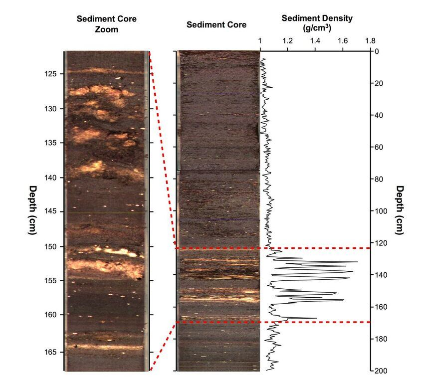 Une image de la carotte de sédiments utilisée dans cette étude par rapport à la profondeur au-dessous du fond du lac. Les couches de sédiments sont constituées de couches sombres constituées de dépôts riches en matière organique et de couches claires composées de gypse minéral (sulfate de calcium dihydraté, CaSO4 · 2H2O).   Le gypse se forme lorsque le niveau du lac baisse pendant les périodes de sécheresse. L'eau d'hydratation dans le gypse a été utilisée dans cette étude pour reconstruire les changements dans les précipitations de la région. Le panneau de droite affiche l'enregistrement de densité de sédiments du noyau. Les périodes de précipitation du gypse sont indiquées par des valeurs de densité >1,1 g/cm3. L'intervalle de 165 à 125 cm s'étend de ~ 620 à ~ 1100 EC. Les couches de gypse entre 154 et 125 cm correspondent approximativement à l'époque du déclin de la civilisation maya classique - Crédit Hodell et al