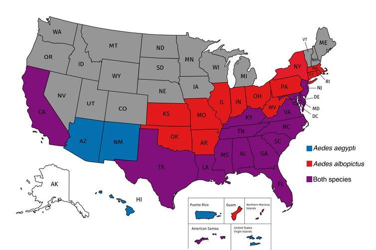 L'aire de répartition estimée des espèces de moustique qui transportent le virus de la dengue et le virus Zika aux Etats-Unis. L'espèce Aedes aegypti est en bleu et Aedes albopictus est en rouge. Les États et territoires où les deux espèces ont été collectées sont en violet. Tous les États et territoires américains, à l'exception de l'Alaska, sont à risque face au virus du Nil occidental - Crédit : Jason Rasgon, CC BY-ND