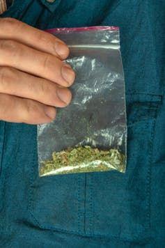 De la marijuana synthétique connue comme Spice - Crédit : busliq/Shutterstock.com
