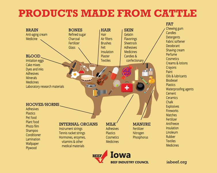 Crédit : Iowa Beef Industry Council