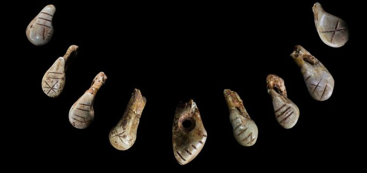 Un collier en dents de cerf, datant de la période glaciaire en Europe, nous raconte bien des choses sur l'organisation de la société à cette époque.