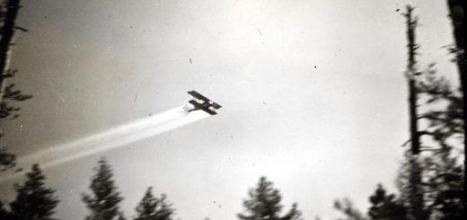 Du DDT pulvérisé sur une forêt d'épicéas dans la région de Kinzua, Oregon, États-Unis, en 1948 - Crédit : CB Eaton/Service des forêts de l'USDA/Wikimedia