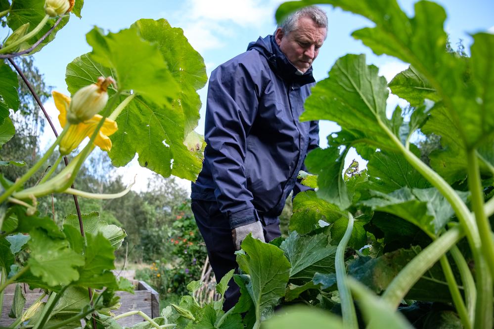 Martin Goddard, jardinier et militant local, s'occupe des jardins du Children's Wood et du North Kelvin Meadow - Crédit : Chris Leslie pour Mosaic