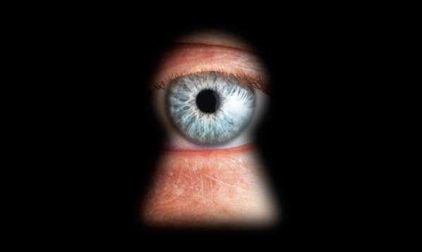 Surveillance de masse : l'Union Européenne recommande OpenBSD, le VPN, Tor ou TrueCrypt