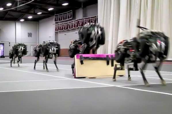 Le robot Cheetah peut sauter en pleine course