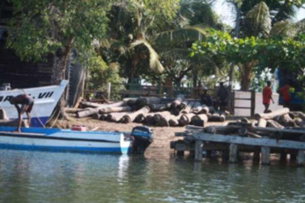 Un bateau chargé de bois précieux coule dans le Cap Masoala
