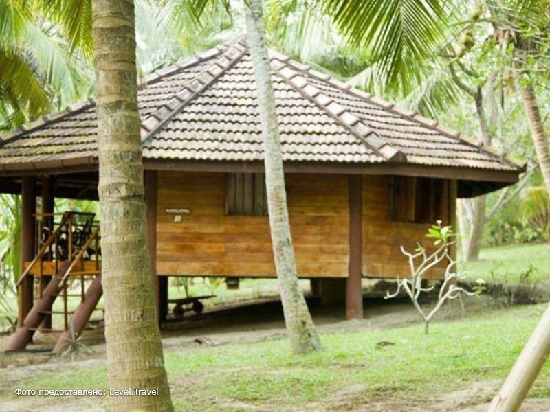 Фотография Palm Paradise Cabanas