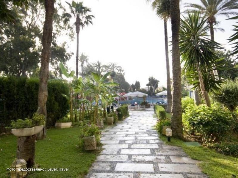 Фотография Palmasol Hotel