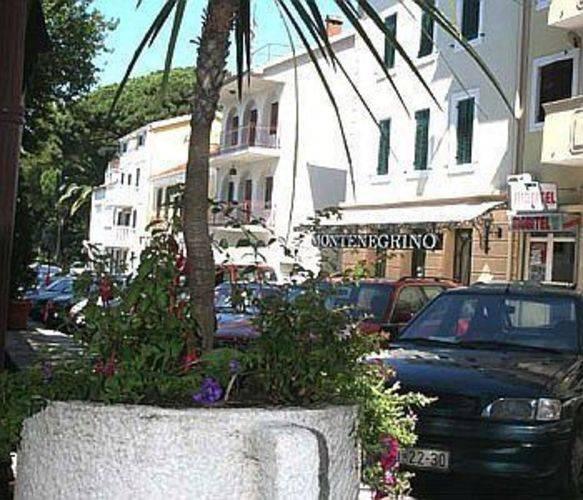 Montenegrino