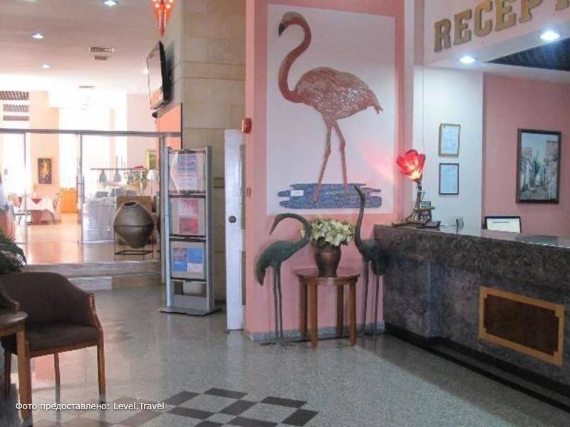 Фотография Flamingo Apts