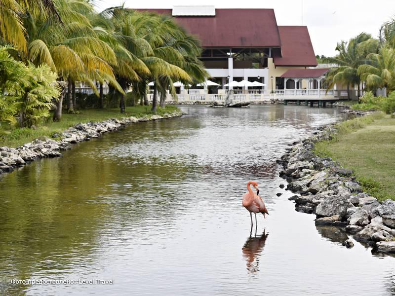 Фотография Memories Caribe Beach Resort (Adults Only 16+)