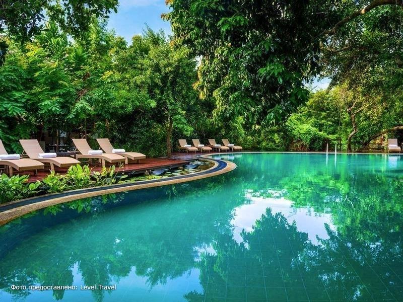 Фотография Jungle Beach Resort