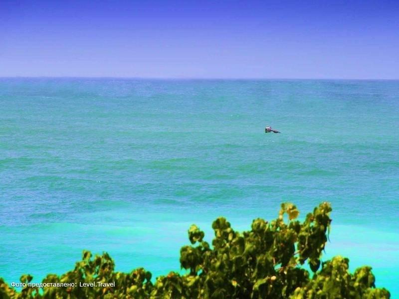 Фотография Neptune Bay