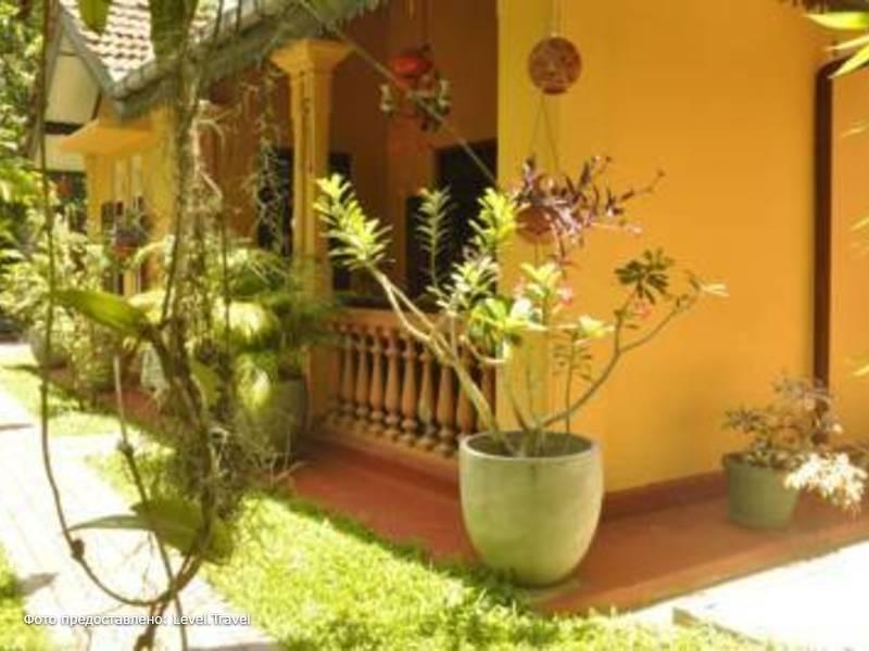 Фотография Green Villa
