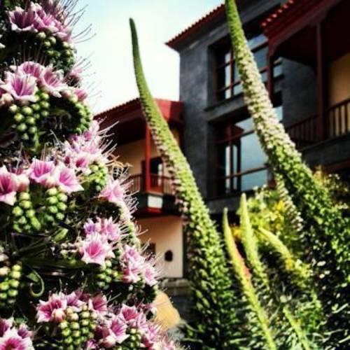 Spa Villalba Hotel