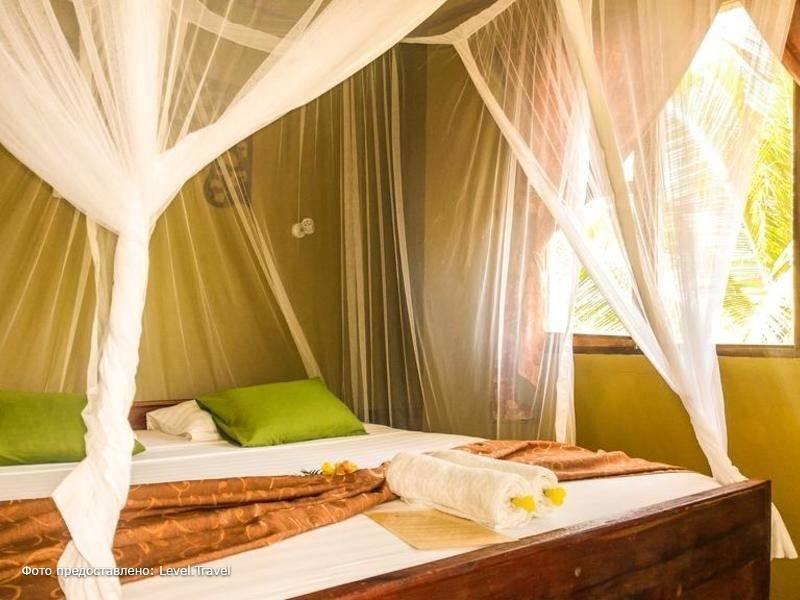 Фотография Kilima Kidogo Guest House