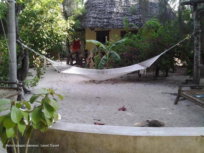 Фотография Casa Umoja Beach Guesthouse