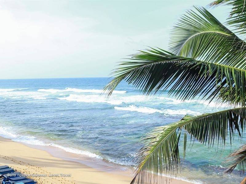 Фотография Polina Beach Resort (Ex.Hansa Surf)