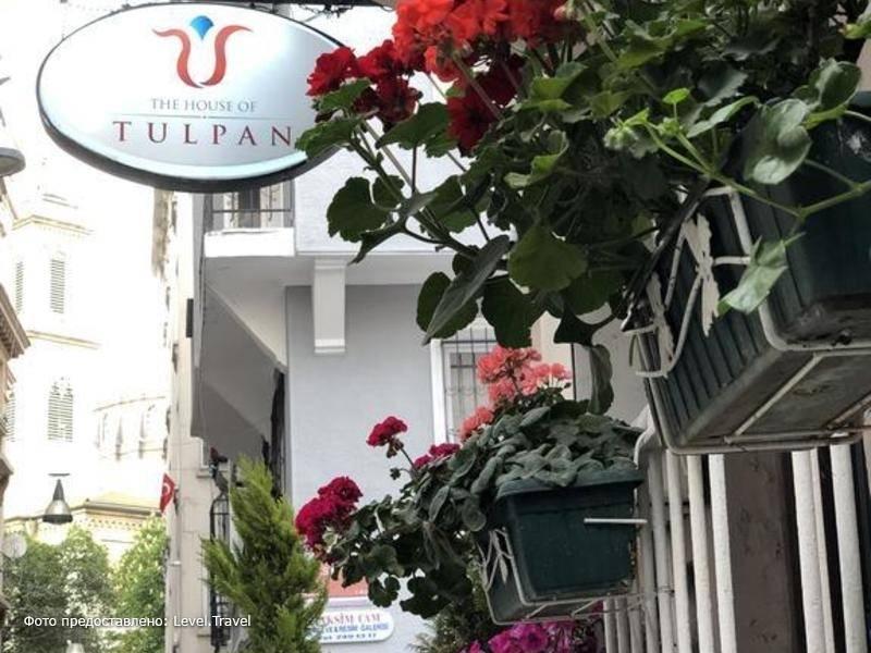 Фотография The House Of Tulpan