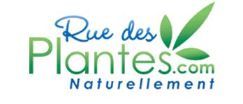 ruedesplantes.com