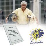 Libro adiestramiento básico en perros - C90035