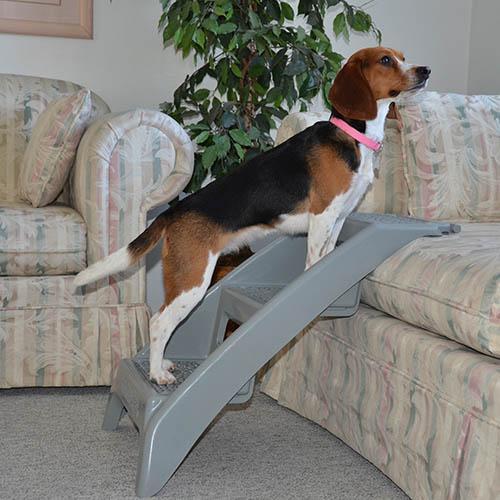 Escalera de f cil acceso para perros - Escaleras para perros ...