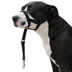 Dog Guider Ibáñez Dogway - HZ0280-HZ0285