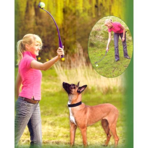 Lanzado de pelotas para perros