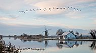 Frosty Morning at Thurne