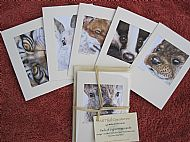 Greetings Cards (Pack of Six)