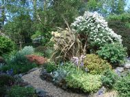 lovely back gardens( your bedrooms look onto this