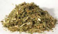 Blessed Thistle .5 oz (Cnicus benedictus)