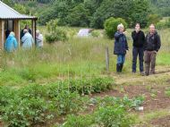 Allotment Open Day July 2010