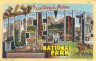 Greetings from Yosemite National Park