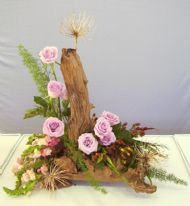 novice class 'wood this do?' (incorporating wood/driftwood)