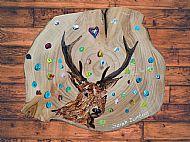 Original Painted Stag Plaque