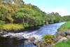 novar fishings, river alness, beat 2, big redd thumbnail