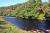 novar fishings, river alness, beat 2, lower meadows thumbnail