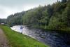 novar fishings, river alness, beat 2, upper meadows thumbnail