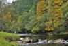 novar fishings, river alness, beat 3, parks pool thumbnail