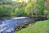 novar fishings, river alness, beat 4, upper raven's rock thumbnail